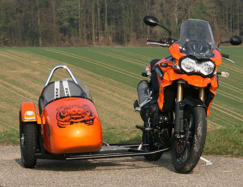 Side Car Ducati Monster A Vendre